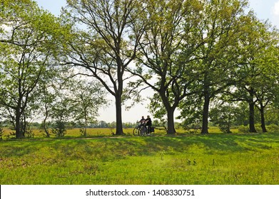 Boxtel, Noord Brabant, Netherlands, 05-23-2019: cycling in the Kampina nature reserve