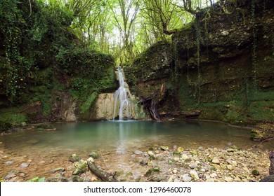 Boxwood waterfall in Abkhazia