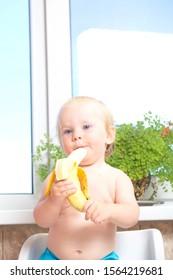 boy blond age 1 year eats banana fruit infant indoor kitchen . belarus,minsk,2015