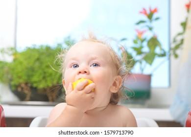 boy blond age 1 year eats mango fruit infant indoor kitchen . belarus,minsk,2015