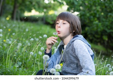 Boy blowing dandelion over blured green grass, summer nature outdoor. Childhood, dreaming, summer, good mood.