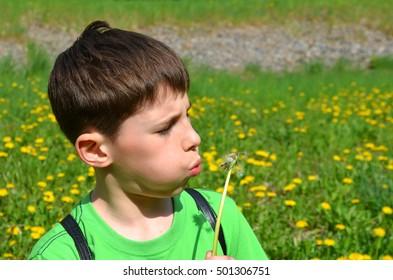 boy is blowing on a dandelion
