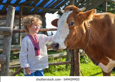 a boy and a bull, a cow and a cowboy, herdsman, child and cattle mammal on a background mountain valley Colors greenery, rural livestock outdoor,