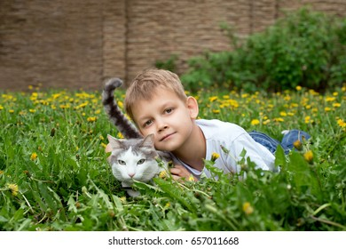 Boy and cat lie on the grass