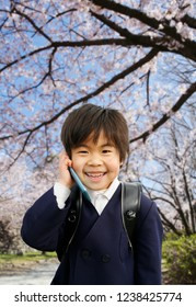 A boy and cherry tree of the Japanese first grader