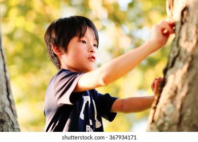boy to climb trees