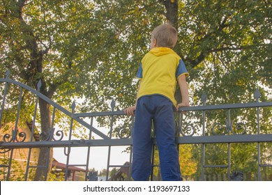 The boy climbed onto the fence. The child climbs on the gate, fence.