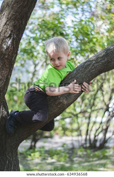 The boy climbed up a tree. Funny spring day.