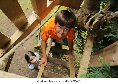 Boy climbing up into a treehouse