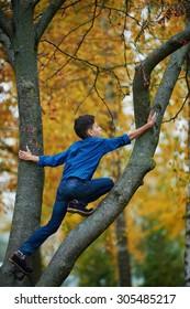 boy climbs up the tree in autumn park