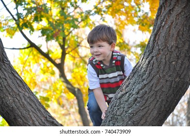 Boy climbs to the tree in autumn park. Cheerful child portrait in park