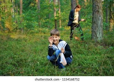 Boy collecting blueberries and mushrooms, in the background Woman, forest