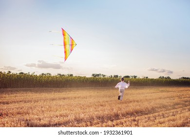 A boy in the countryside is flying a kite. The concept of summer holidays and outdoor activities.