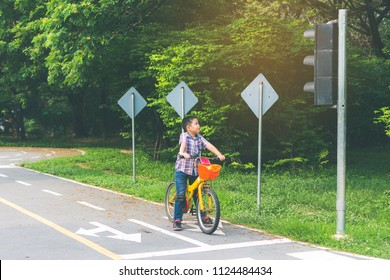 boy is cycling in the park, bicycle stops at traffic lights