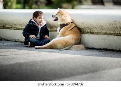 Boy with a dog. dog Akita