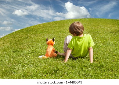a boy and a Fox on the green lawn