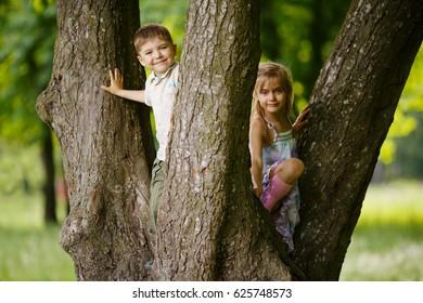 boy and girl climb big tree