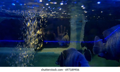 Boy and girl drowned underwater. Car auto accident underwater drowned people