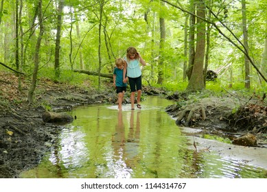 Boy and girl holding hands as they walk together through a creek in a green tree forest
