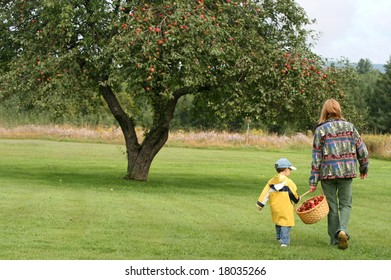 boy and grandmother picking apples