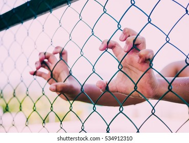 boy hand holding steel mesh