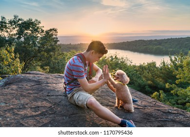 A boy and his dog doing a hi five at the top of an overlook they hiked