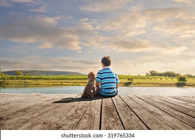 a boy and his dog sitting on a wooden dock by the edge of a pond