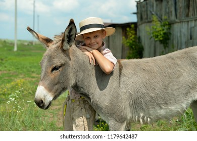 A boy with his donkey are in the country at summertime