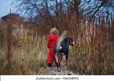 a boy and his friend, Great Swiss Mountain Dog