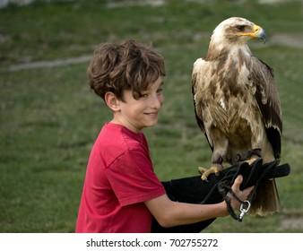 boy holding a eagle, Show falconry