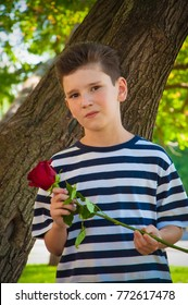 boy holding a rose and smiling. the concept of love.
