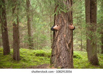 a boy hugging a tree in the woods