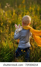 A boy in the image of the Little Prince Antoine Exupery holds a fox in his hands. Fennec tame. A child in a yellow scarf does not look at the camera. Fox. Fennecus zerda.