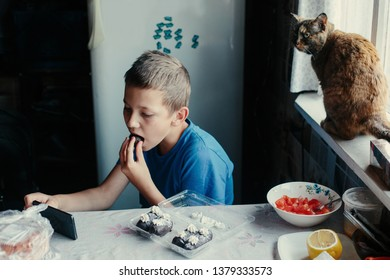 Boy kid eating chocolate cake using cell phone, watching video, cat seating near on the window
