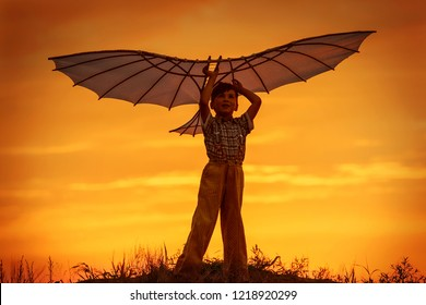 Boy launch a kite in the field at sunset
