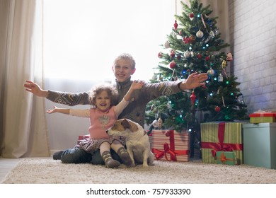 Boy and little girl with a breed of Jack-cherry scattered near a Christmas tree, Children playing with a dog in the room. Brother and sister are happy in Christmas!