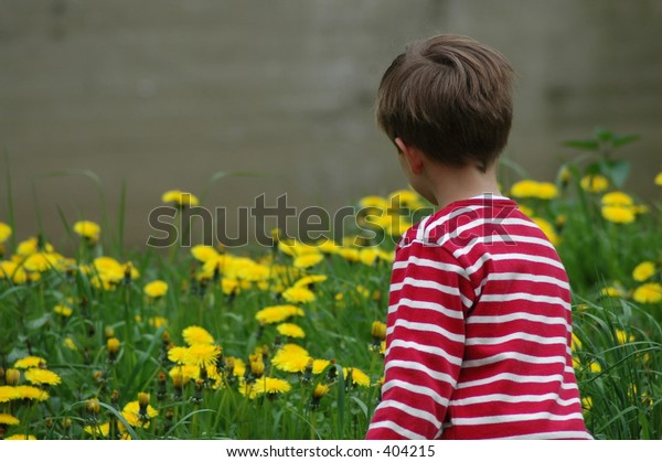 boy looking at flowers