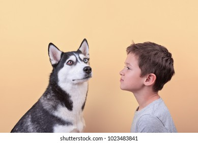 the boy looks at his pet, the concept of children's emotions and friendship