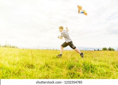 Boy in the meadow fly kites