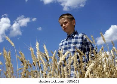 Boy in the middle of a wheaten field