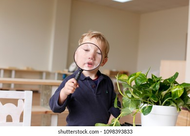 Boy in a montessori classroom using a magnifying glass to explore his natural curiosity.