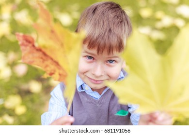 A boy offers two leaves