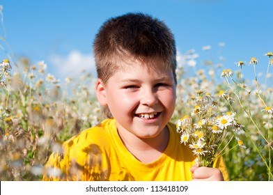 Boy on meadow with daisies
