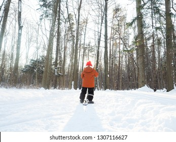 Boy in orange and black winter suit and red hat on snow in winter conditions in a naked forest in Norway