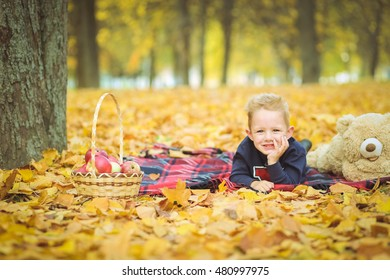 A boy in a park in autumn leaves