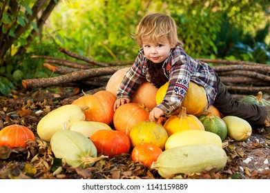 a boy in a plaid shirt is lying on a large pile of pumpkins and zucchini.