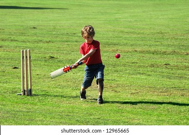 Playing Cricket Images Stock Photos Vectors Shutterstock