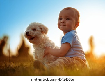 Boy playing with his dog outdoors,enjoying together.