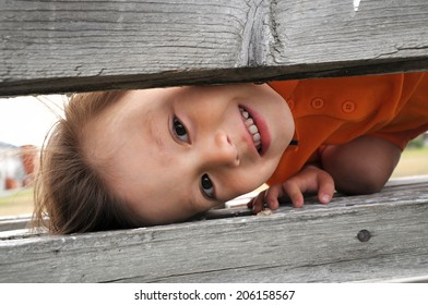 boy playing and looking over wooden boards,child play game hide and seek, happy childhood