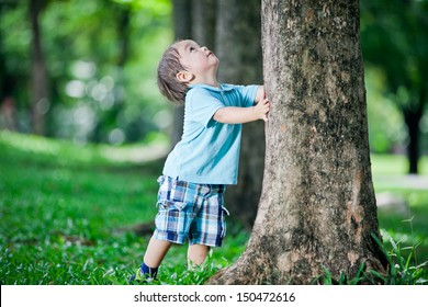 Boy playing at tree